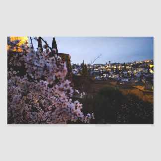 Granada's Albayzin seen from The Alhambra's almond Sticker