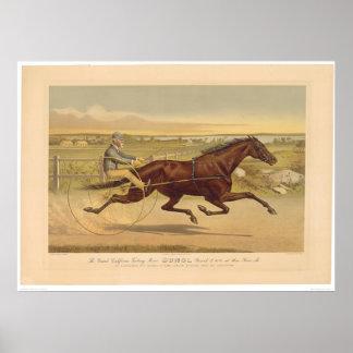 Grand California Trotting Mare Sunol (0652A) Poster
