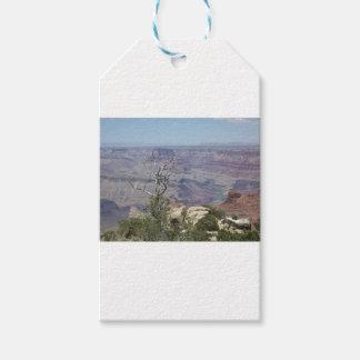 Grand Canyon Arizona Pack Of Gift Tags