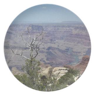 Grand Canyon Arizona Plate