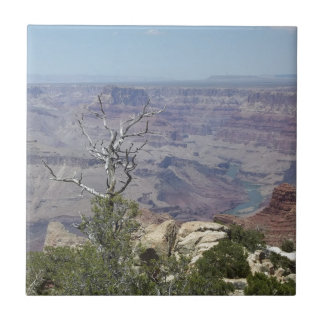 Grand Canyon Arizona Tile