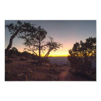 Grand Canyon Desert View Photo