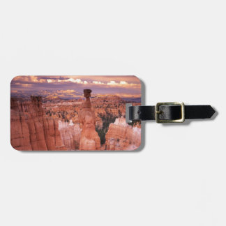 Grand Canyon during Golden Hour Luggage Tag