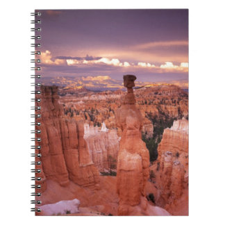 Grand Canyon during Golden Hour Notebook