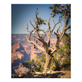 Grand Canyon Hermit's Rest Route Photograph