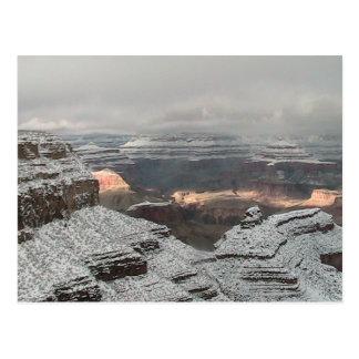 Grand Canyon Life Postcard