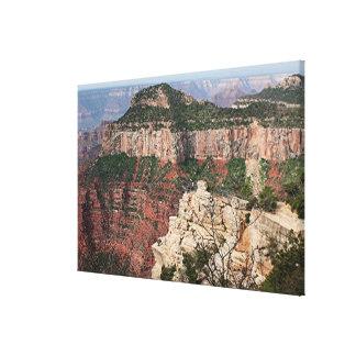 Grand Canyon North Rim, Arizona 2 Canvas Print