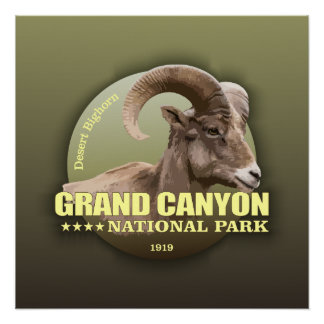 Grand Canyon NP (Bighorn) WT Perfect Poster