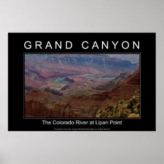 Grand Canyon River 4853 Black Poster