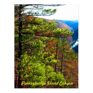 Grand Canyon , Wellsboro Pa Postcard