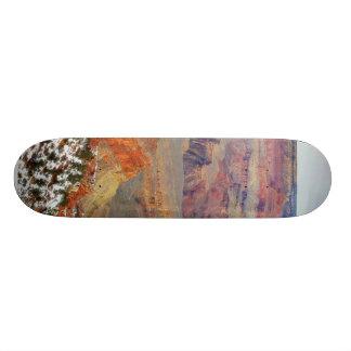 Grand Canyons In Arizona Custom Skate Board