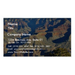 Grand Canyons Overlook Pack Of Standard Business Cards