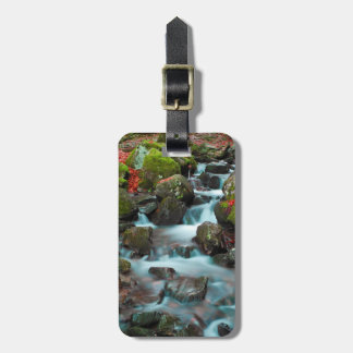 Grand Cascades Tendons Waterfall Luggage Tag