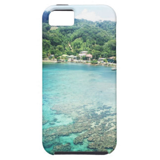 Grand Cayman Coral Reef iPhone 5 Cover