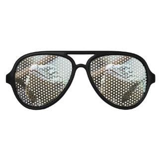 Grand Cayman Iguana Aviator Sunglasses