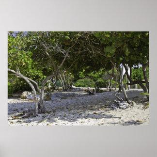 Grand Cayman Islands Poster