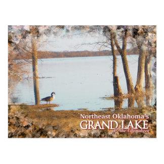 Grand Lake Oklahoma post card egret