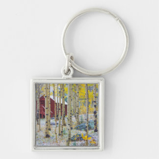 Grand Mesa Solitary cabin in a forest Silver-Colored Square Keychain