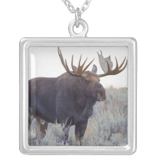 Grand Teton National Park, Bull Moose Silver Plated Necklace