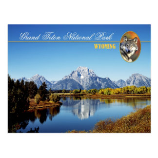 Grand Teton National Park in Wyoming Postcard