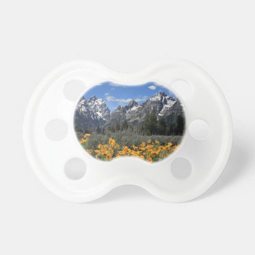 Grand Teton National Park Pacifiers