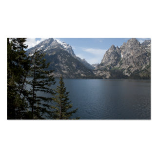 Grand Teton National Park photography profile card Double-Sided Standard Business Cards (Pack Of 100)