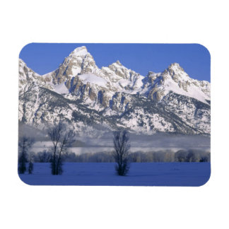 GRAND TETON NATIONAL PARK, WYOMING. USA. Fog & Rectangular Photo Magnet