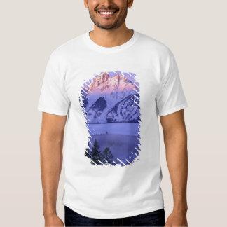 GRAND TETON NATIONAL PARK, WYOMING. USA. Fog & Shirt