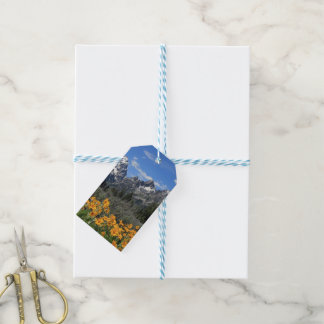 Grand Teton Springtime Souvenir Photo Pack Of Gift Tags
