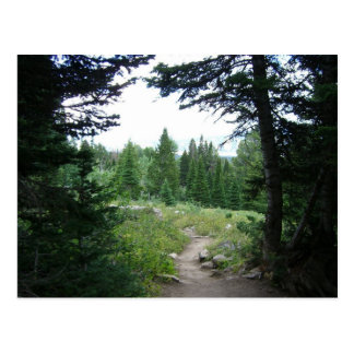 Grand Teton Trail Postcard