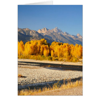 Grand Tetons on the Snake River Card