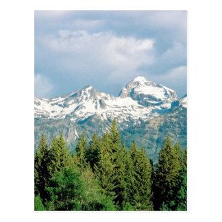 Grand Tetons Park Postcard