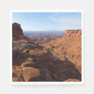 Grand View Point at Canyonlands National Park Paper Napkins
