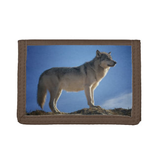 Grand Wolf Trifold Wallet