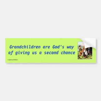 Grandchildren are God's Way Bumper Sticker