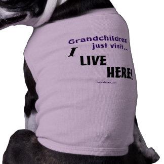 Grandchildren just visit..., I LIVE HERE! Dog Tshirt