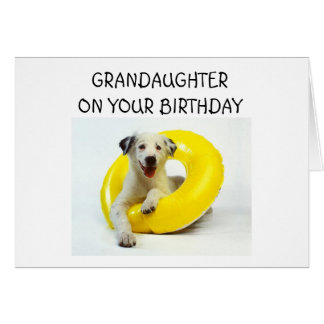 GRANDDAUGHTER ON YOUR BIRTHDAY CARD