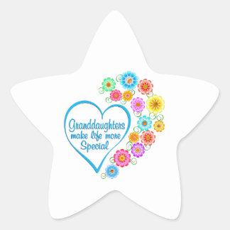 Granddaughter Special Heart Star Sticker