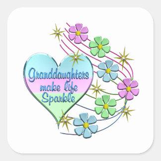 Granddaughters Make Life Sparkle Square Sticker