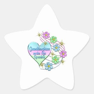 Granddaughters Make Life Sparkle Star Sticker