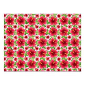 Grandes fleurs roses rouges de ketmie photo