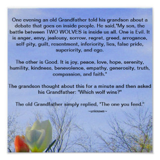 Grandfather's Wisdom Poster