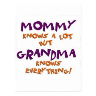 Grandma Knows Everything Postcard
