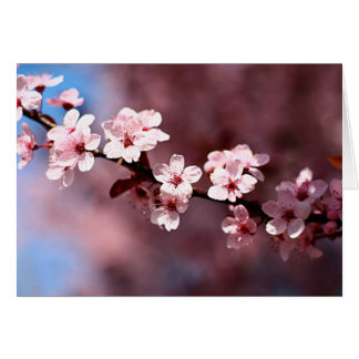 Grandmother's Blossoms - Blank Greeting Card