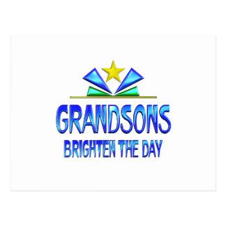 Grandsons Brighten the Day Postcard
