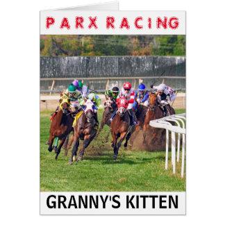 Granny's Kitten Card