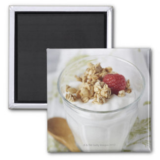 Granola, Oats, Toasted, Fruit, Berry, Raspberry, Square Magnet