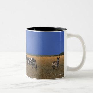 Grant Zebra 2 Two-Tone Coffee Mug