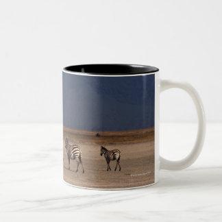 Grant Zebra 4 Two-Tone Coffee Mug