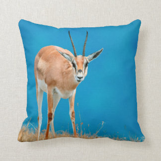 Grant's Gazelle (Gazella Granti) Ewe Portrait Throw Pillow